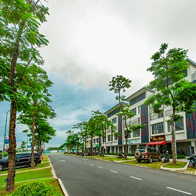mặt bằng chung cư Hateco Hoàng Mai